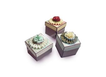 Hộp bánh cupcake 5